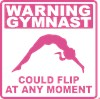 Gymnast Flip