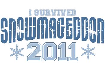 I Survived Snowmageddon 2011