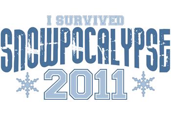 I Survived Snowpocalypse 2011