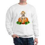 Yellow Labr-O-Lantern Sweatshirt