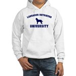 Lab University Hooded Sweatshirt