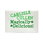 Carlisle Magically Delicious Rectangle Magnet (100