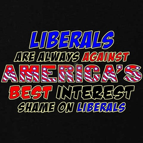 liberals against america