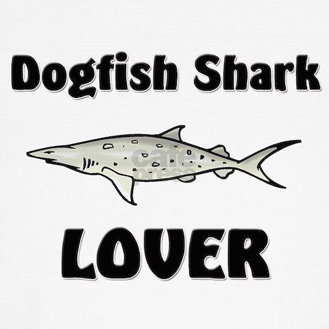 dogfish shark circulatory system. Dogfish+shark+heart+