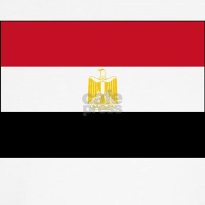 Flag of Egypt Kids T-Shirt. more custom t-shirts